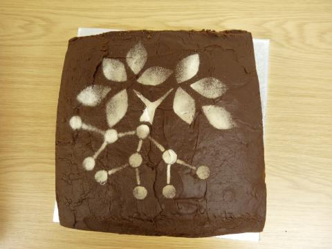 A home-made chocolate cake with the GreenNet logo decorated on top