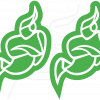 Green Jitsi